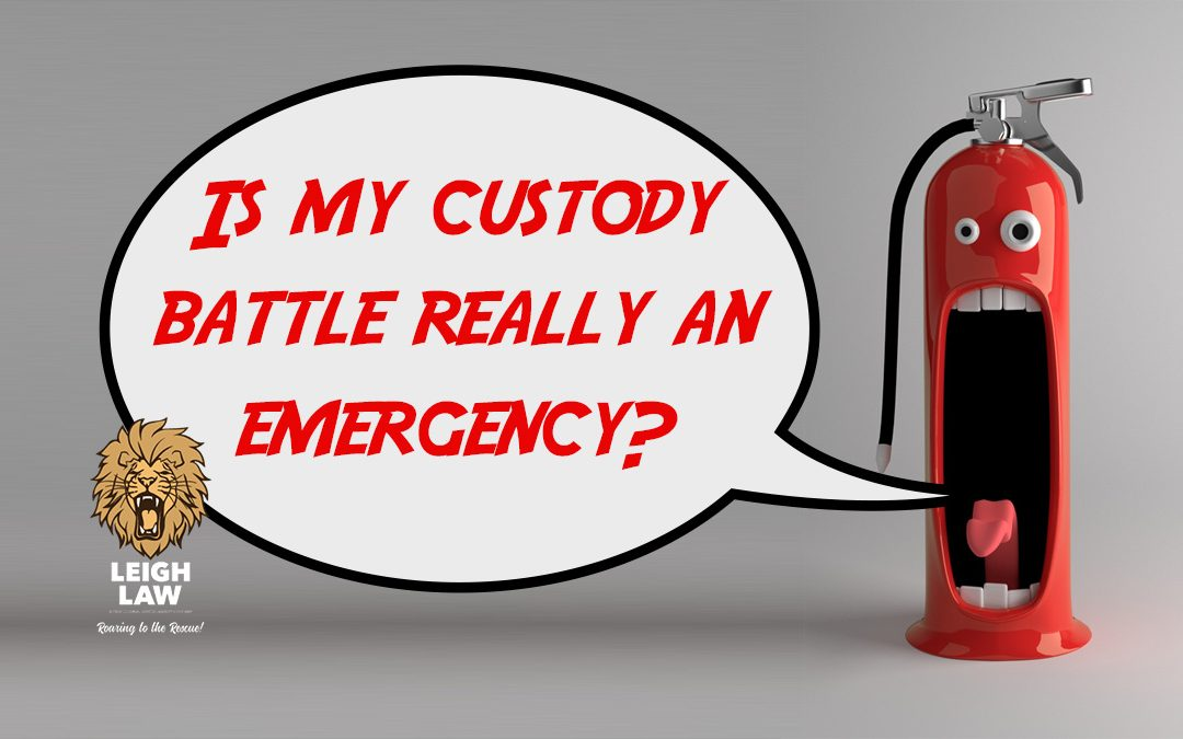 "Cartoon of a fire extinguisher screaming ""Is my custody battle really an emergency."""