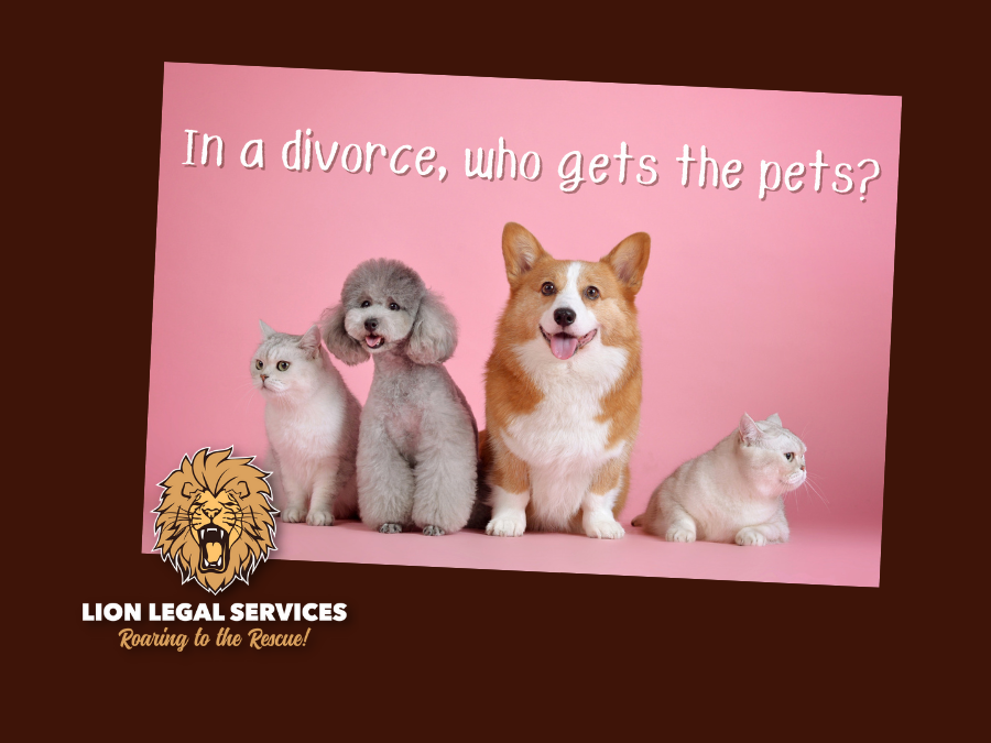 Who gets the pets in Arkansas divorce?