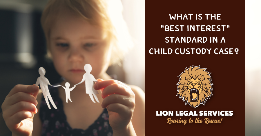 What is the Best Interest Standard in a Child Custody Case?